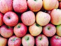 Thailändska äpplen för försäljningar i supermarket Royaltyfria Bilder
