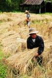 Thailändska arbetare Arkivbild