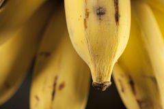 Thailändska bananer Arkivbild