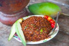 Thailändska Chili Salt Fotografering för Bildbyråer