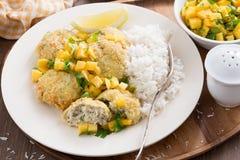 Thailändska fiskkakor med mangosalsa och ris Arkivfoton