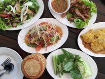Thailändska foods, thailändsk gourmet, thailändsk kokkonst Arkivbild