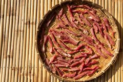 Thailändska Fried Sun-Dried Beef royaltyfri foto