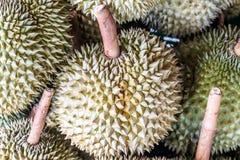 Thailändska frukter: Durian den kontroversiella konungen av tropiska frukter Arkivbilder
