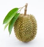 Thailändska frukter för Durian Arkivfoto
