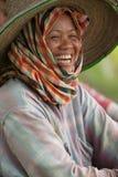 Thailändska kvinnor som arbetar i risfältet Royaltyfri Bild