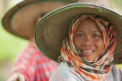 Thailändska kvinnor som arbetar i risfältet Arkivbild