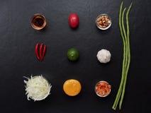 Thailändska papayasalladingredienser, papaya, torkade räka, tomaten, limefrukt, jordnöten, bönan, chili, vitlök, gömma i handflat Royaltyfri Bild