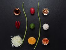 Thailändska papayasalladingredienser, papaya, torkade räka, tomaten, limefrukt, jordnöten, bönan, chili, vitlök, gömma i handflat Royaltyfri Foto