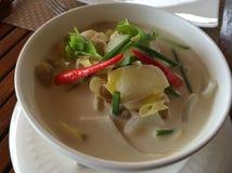 Thailändska Tom Kha Gai Chicken Soup Arkivbild