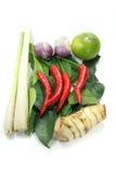 Thailändska Tom Yum kryddor Royaltyfria Bilder