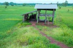 Thailändskt bondehus royaltyfria bilder