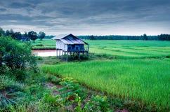 Thailändskt bondehus royaltyfria foton
