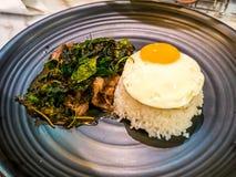 Thailändskt kryddigt populärt berömt matbasilikanötkött stekte risrecept med det avfyrade ägget Kao Pad Krapao Kai Dao royaltyfri foto