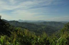 Thailändskt landskap i med nya gröna ängar Arkivfoton