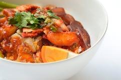 Thailändskt matgriskött över ris med söt skysås arkivfoto