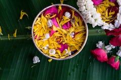 Thailändskt traditionellt för den Songkran festivalen arkivbild