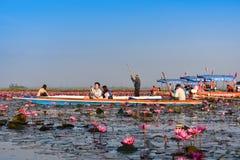 Thailändskt turist- tagandefartyg som besöker havet av den röda näckrons arkivfoton