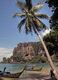 Thailand. Beach and longtail boats Tonsi thailand Royalty Free Stock Image