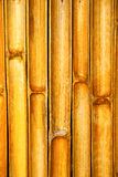 Thailand abstract cross bamboo in the temple kho phangan Stock Photo