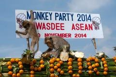 Thailand-Affe-Partei (Thailand-Affe-Buffet) Lizenzfreies Stockbild