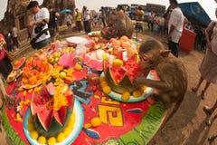 Thailand-Affe-Partei (Thailand-Affe-Buffet) Stockbild