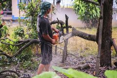 THAILAND-AUGUST,16 :Young man cutting wood to be used as firewood. THAILAND AUGUST,16 2017.  Stock Image