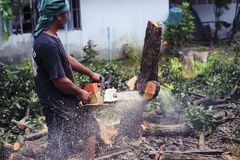 THAILAND-AUGUST,16 :Young man cutting wood to be used as firewood. THAILAND AUGUST,16 2017.  Stock Photos
