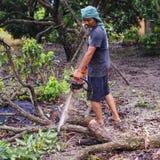 16 Thailand-AUGUSTUS: Jonge mensen scherp hout dat als brandhout moet worden gebruikt THAILAND 16 AUGUSTUS, 2017 Stock Afbeeldingen