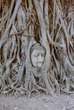 Thailand Bangkok Ayyuthaya. Travel through historical places in Thailand royalty free stock image