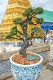 Thailand Bangkok den storslagna slotten arkivbilder