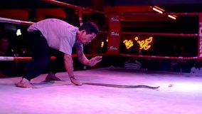 Thailand, Bangkok, Schlangenbeschwörer stock video footage