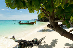 Thailand. Beautiful tropical nature in Thailand Stock Image