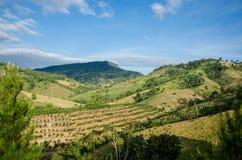 Thailand berg på Khao Kho. Arkivbilder
