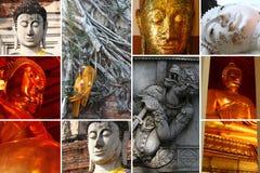 Thailand Buddha statues Stock Image