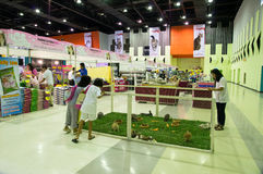 Thailand Cat Show 2013,13th. Stock Image