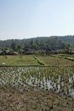 Thailand Chiang Mai, Karen lång halsby Royaltyfri Bild