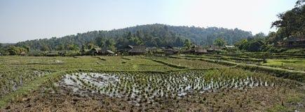 Thailand Chiang Mai, Karen lång halsby Royaltyfri Fotografi