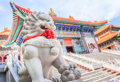 Lion guardian at the entrance to traditional Chine Royalty Free Stock Photography