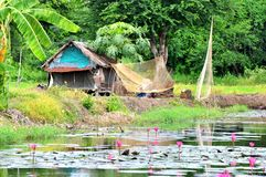 Thailand country life Royalty Free Stock Image