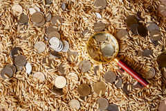 Thailand, the country's rice output making money Stock Photography