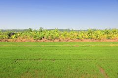 Thailand countryside Stock Photos
