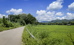 Thailand countryside view Royalty Free Stock Image