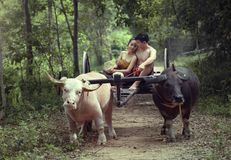 Thailand The couple ancient in countryside of Thai. Royalty Free Stock Photo