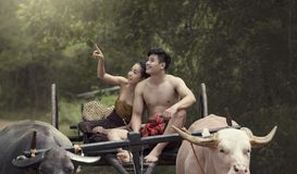 Thailand The couple ancient in countryside of Thai. Stock Photos