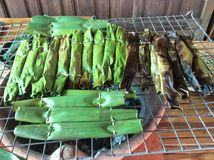 Thailand dessert grilled banana. Grilled banana wrapped with banana leaf Thailand traditional dessert inside is sticky rice Stock Image