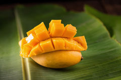 thailand dessert by sweet mango and sticky rice on banana leaf. Royalty Free Stock Photo