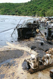 THAILAND-ENVIRONMENT-OIL-POLLUTION Stockfotos