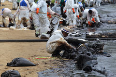 THAILAND-ENVIRONMENT-OIL-POLLUTION 库存照片