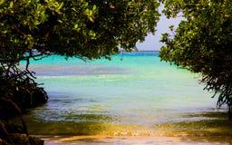 thailand för angthongnationalparkhav sikt Hemlig strand i aruba Arkivbilder
